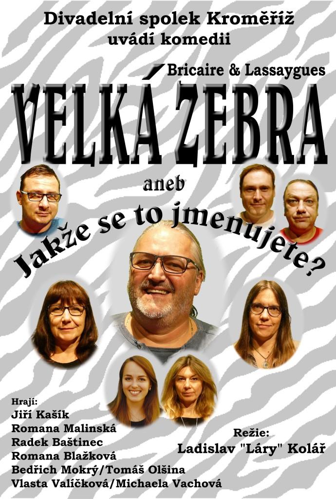 Plakat Velka zebra 3
